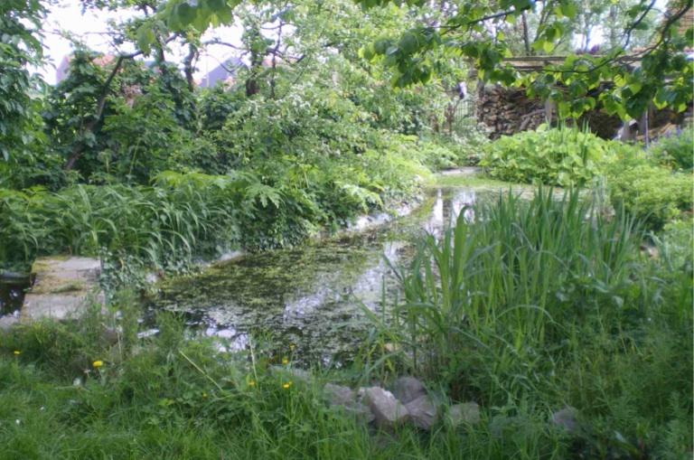 jardin mouscron.jpg