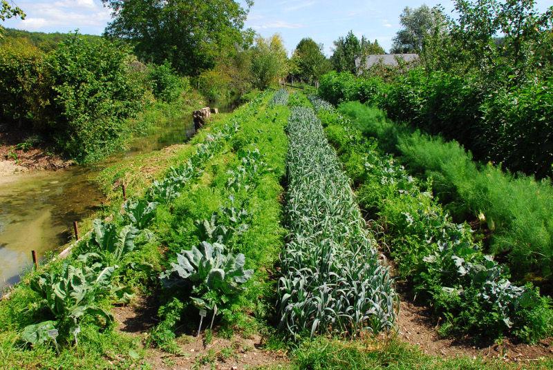 Qu 39 est ce que la permaculture une exp rience in dite sur la ferme du bec hellouin fondation - Qu est ce que la permaculture ...