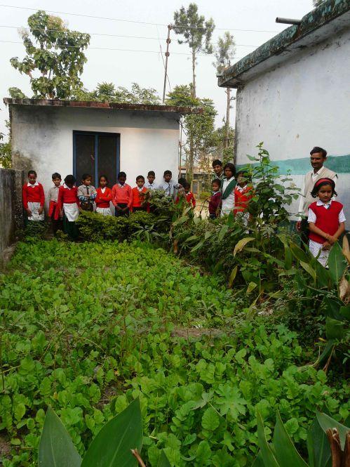 Ecole-Nayagaon-plantations-depuis-3-moismoment-de-planter-les-le?gumes.jpg