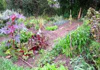 croq-jardin.jpg