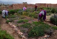 le-jardin-france-maroc-a-0.png