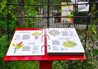 petit-jardin-du-monde.png