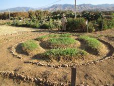 Jardin Mandala. Ph2.jpg