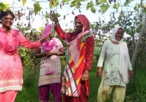 Dandipur-Paysannes.jpg
