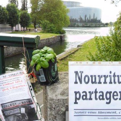 a056_incredible_edible_todmorden_strasbourg_parlement_europeen_w1600.jpg