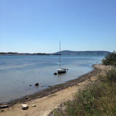 Au bord du Bassin de Thau.jpg