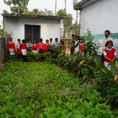 C?cole nayagaon- plantations depuis 3 mois,moment de planter les lC?gumes.JPG