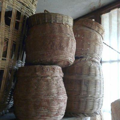Conservation des semences dans les villages, en attendant la banque de semences