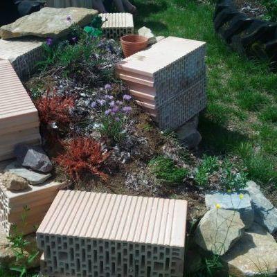 Une spirale jardinée, délimitée par des briques, sur lesquelles viennent se dorer les lézards