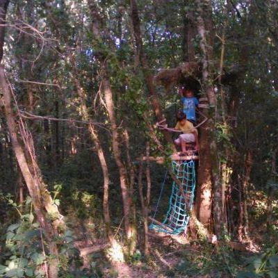 Construction de cabanes dans les bois