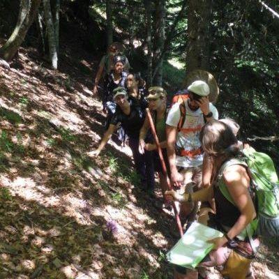 Formation des BTS Gestion et Protection de la Nature sur les vieilles forêts