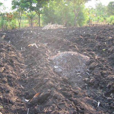 Incorporation de compost
