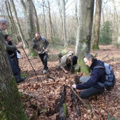 Inventaire de vieilles forêts en plaine et conseils au propriétaire © Nature en Occitanie