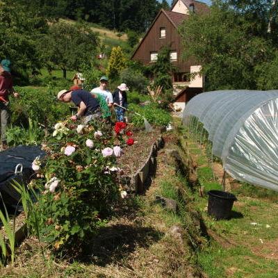 Le jardin en biodynamie des Allagouttes : le travail au jardin sur l