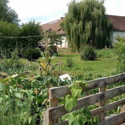 Le jardin de Canop