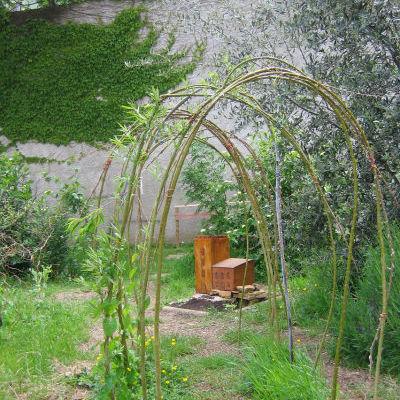 Le jardin Gilibert