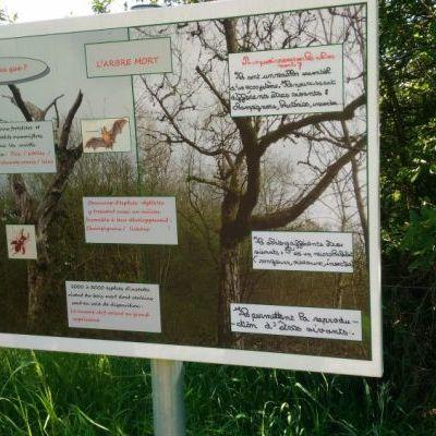 Un panneau du sentier pédagogique réalisé par les élèves