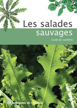 Les salades sauvages, guide de cueillette