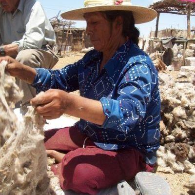 Utilisation de la laine à San Isidro